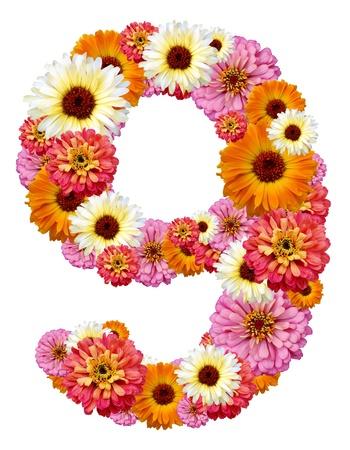 arabic numeral: arabic numeral , nine  Stock Photo