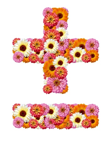 Mathematical symbols made of flowers, the plus and minus Stock Photo - 10245399