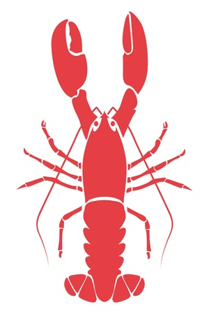 lobster illustration