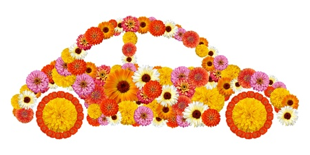 Floral car shape Stock Photo - 14973900