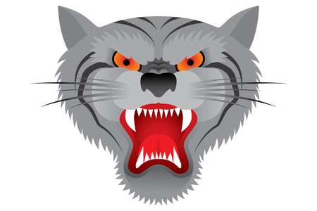 Tiger face Stock Vector - 15496366
