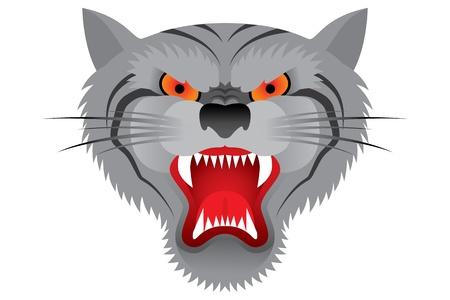 Tiger face Stock Vector - 15496366
