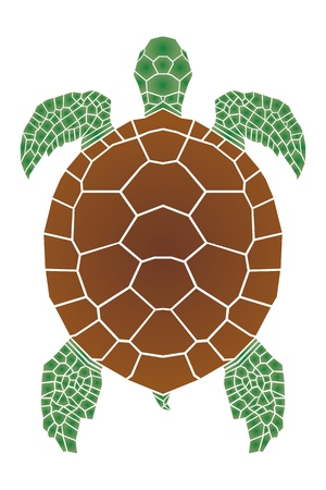 hawaii islands: Sea turtle