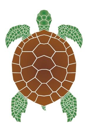 hawai: Tortuga de mar