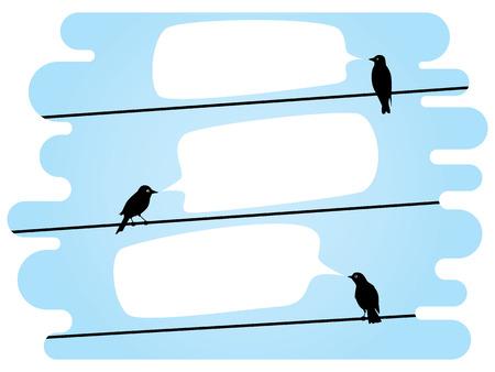 cuervo: p�jaros que se sientan en un alambre y hablar el uno al otro