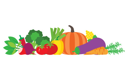 Set of fresh vegetables. Modern flat design. Vector illustration. Иллюстрация