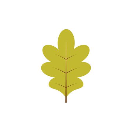 Vector illustration. Autumn decoration. Green oak leaf isolated over white background Illustration