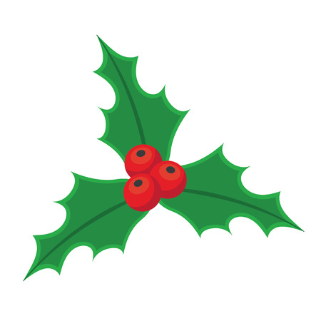 Holly berry Christmas on a white background. Mistletoe with Red Berries and Green Leaves isolated object.