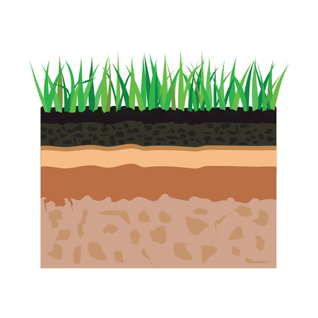 bedrock: illustration of diagram for layer of soil, nature landscape with soil tile and grass elements Illustration