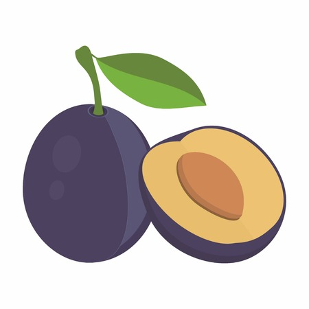 plums: composition of plums, purple plum fruits whole and slice appetizing looking, tasty fruits for the packaging of juice, plums with leaves