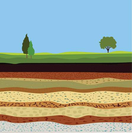 soil formation and soil horizons, underground layers of earth, landscape with sky and trees, the geological structure of the earth Ilustração