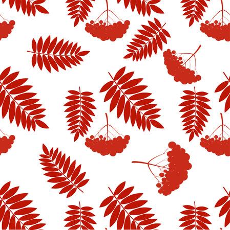 bright: seamless floral pattern with rowan berries, rowan bunch Illustration