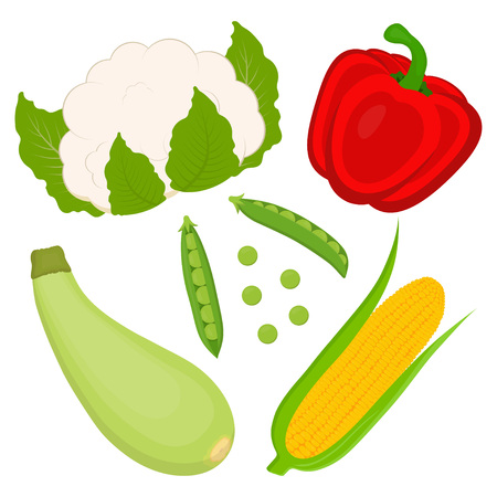 set of sweet golden corn and dietary vegetables, cobs of corn with leaves, pods of peas and seeds, as well as red bell peppers, zucchini and cauliflower Illustration