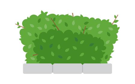 白い背景に緑の低木のフェンス。フラットなスタイルのブッシュアイコン。ベクトルのイラストレーション。