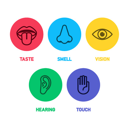 Icon set of five human senses vector illustration Illustration
