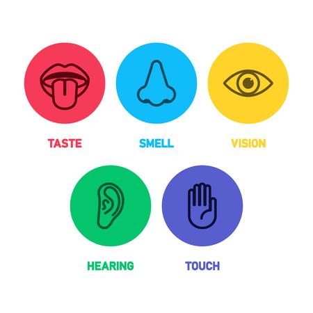 Icon set van vijf menselijke zintuigen vector illustratie