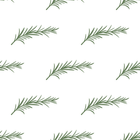 seamless pattern with rosemary on white, background of spices, wallpaper with rosemary branches