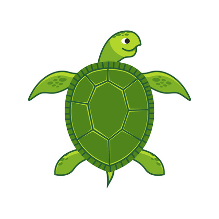 Green Sea Turtle isolated. Vector illustration on white background