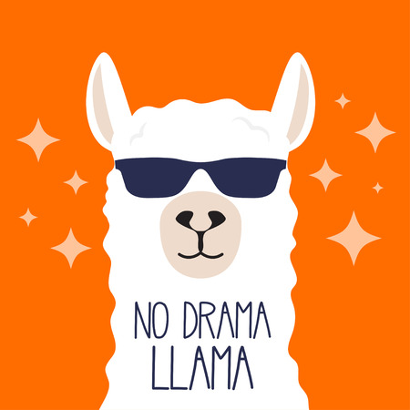 Llama blanca con gafas de sol y rotulación. No llama drama. Cartel motivacional para estampados. Ilustración vectorial.