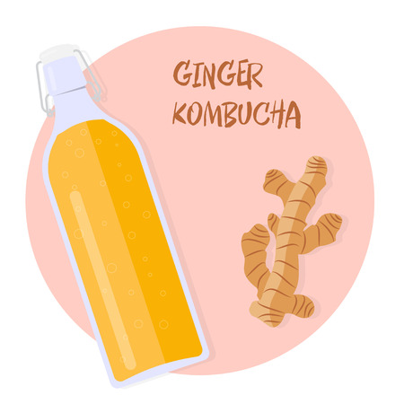 Kombucha tea with ginger in a vintage bottle. Vector illustration Stock Illustratie