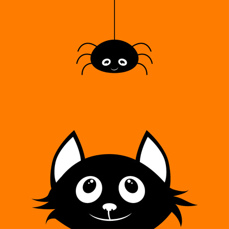 simple picture with fun black cat and spider on orange background to halloween feast