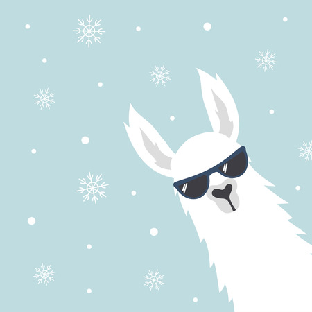 Christmas card with llama in sunglasses, greeting card