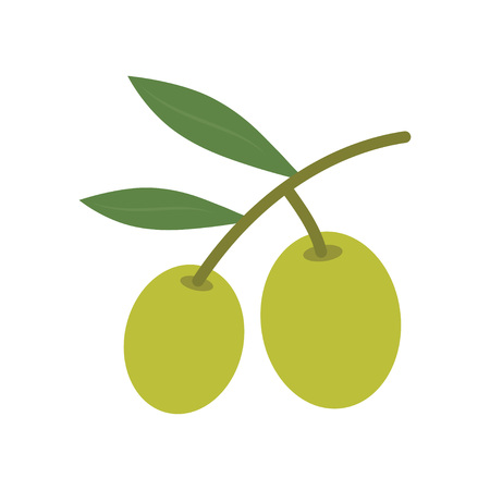 Olive tree branch icon. Vector illustration, isolated on white background