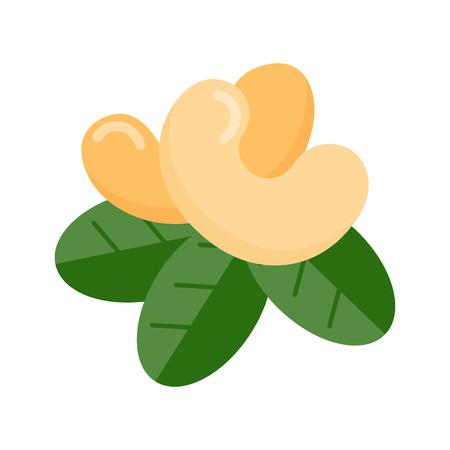 Icône de noix de cajou sur fond blanc. Illustration vectorielle Vecteurs