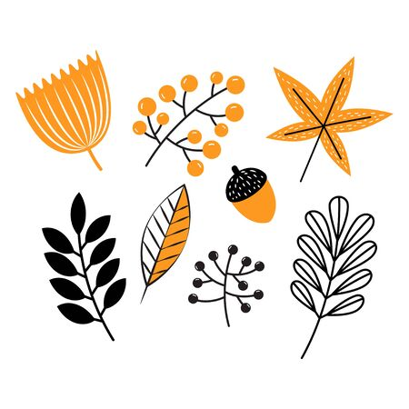 Set of autumn leaves and berries. Isolated on white background. Simple cartoon flat style. Can be used for frame leaflet or web banner. Vector illustration Illustration