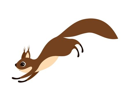 vector illustration of little cute jumping squirrel isolated on white background, can be used for greeting card, poster, print and any desing