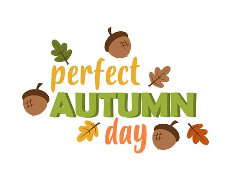 cute card of oak leaves, acorns and lettering perfect autumn day isolated on white, colored vector trendy illustration