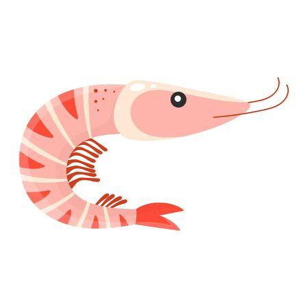 cartoon shrimp isolated on white background, cute prawn, vector illustration, seafood print
