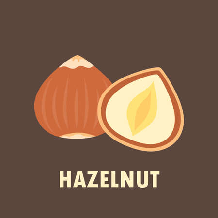 whole and half peeled hazelnut isolated on brown background, vector illustration of healthy food in cartoon flat style