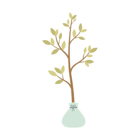 seedling tree isolated on white background, vector illustration of seeds and seedlings