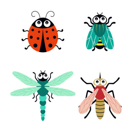 cute cartoon insects, ladybug, dragonfly, mosquito and fly, vector illustration isolated on white background Vettoriali