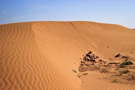 dune Фото со стока - 100130064