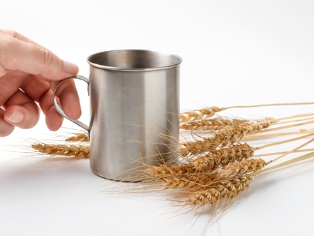 hand holding mug and wheat spikelets on white background