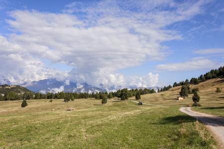 monte: The meadows of Viote, Monte Bondone Stock Photo