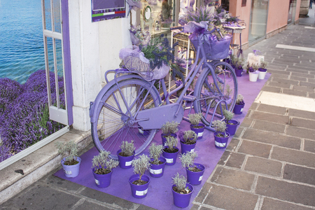 Lavender-colored bicycle and lavender flowers