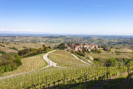 Aerial view of the vineyards of Castiglione Tinella, Piedmont. Banco de Imagens - 127936700