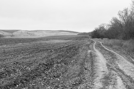 the ploughed field: Ploughed field with a beautiful view and expensive in side.