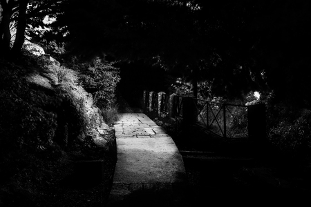 Stone path and railings at night between trees and the stones illuminated by streetlights. Stock Photo