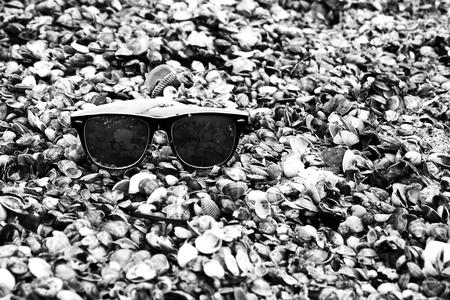 Sunglasses on seashells on the seashore close-up.