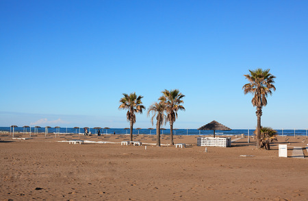 Deserted beach in autumn or spring and palm trees on it. Reklamní fotografie