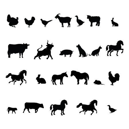異なるイラスト ベクトルの農場の動物のコレクション