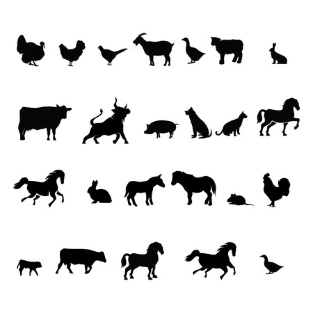 Collection of different illustration vector farm animals Illustration