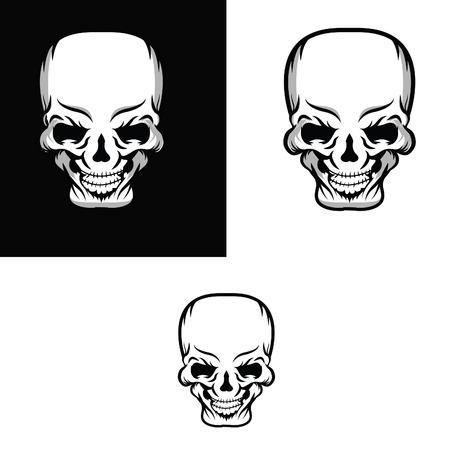 Skull vector illustration  Illustration