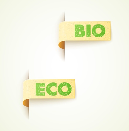 set of two paper labels eco design with text Vector