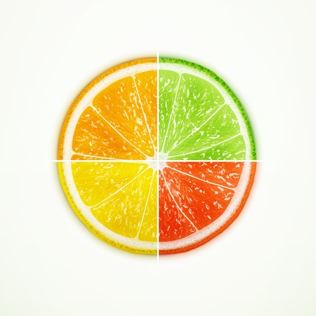 quartered: Orange, lime, lemon and grapefruit quartered  Illustration