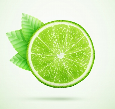 lime: fresh lime with leaves Illustration